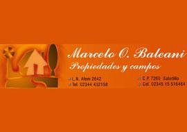 Baleani Marcelo O.