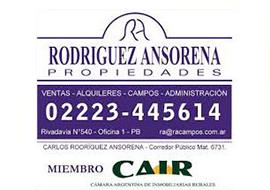Rodriguez Anzorena Propiedades