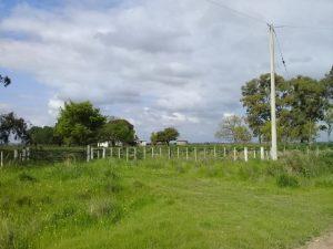 Campo-190-2-6-300x225