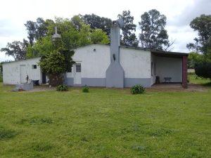 Campo-5-6-300x225